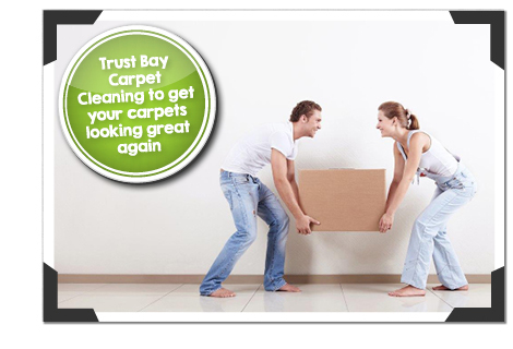 Bay Carpet Cleaning